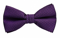 Polyester Pre-Tied Purple Bow Tie with Check Pattern